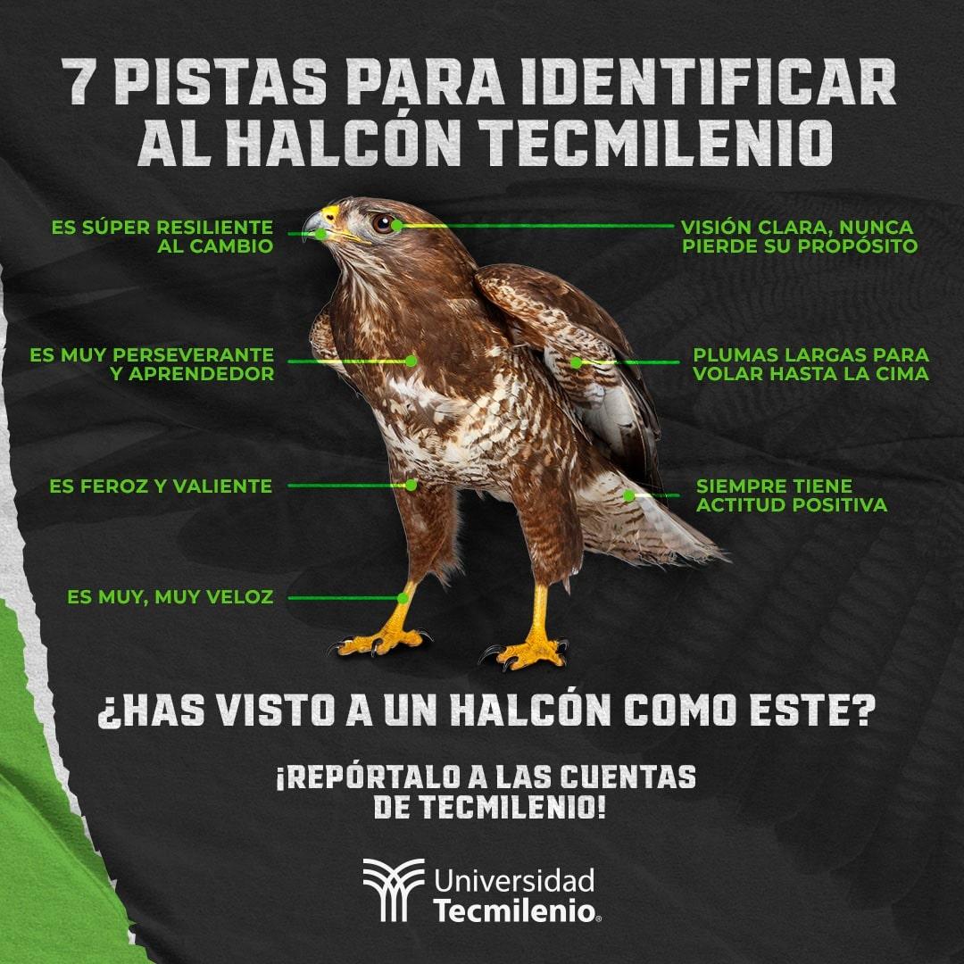 Halcón Tecmilenio
